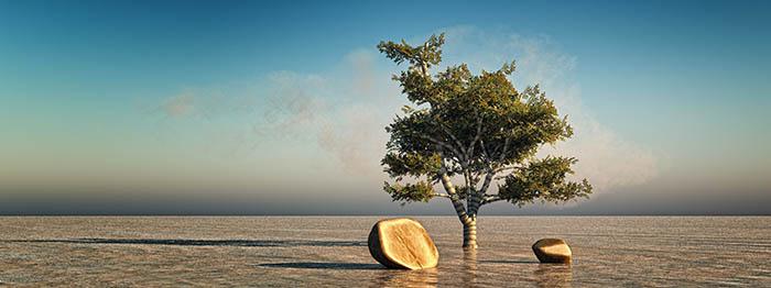 Fotoart Vue Playa
