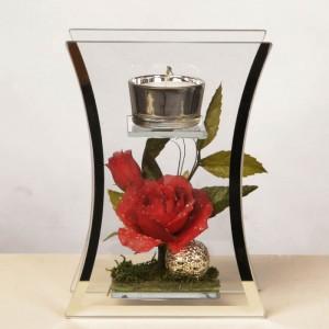 Windlicht mit Blüte hinter Glas